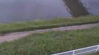 御笠川・隅田橋 ライブカメラと雨雲レーダー/福岡県福岡市博多区