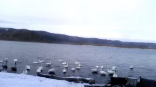 屈斜路湖 ライブカメラ(屈斜路湖ホテル)と気象レーダー/北海道弟子屈町