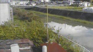 仁淀川・宇治川排水機場内水ライブカメラと雨雲レーダー/高知県いの町
