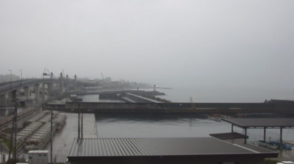小田原城・漁港の駅 ライブカメラと雨雲レーダー/神奈川県小田原市