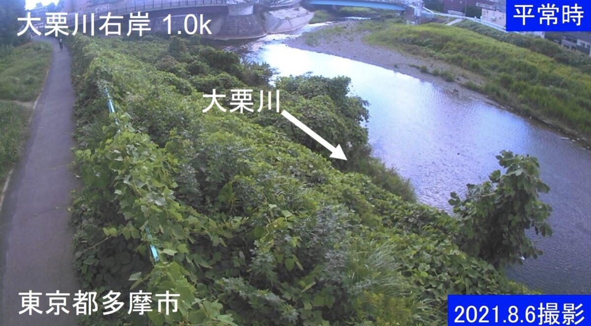 大栗川・右岸1.0kライブカメラと雨雲レーダー/東京都多摩市連光寺