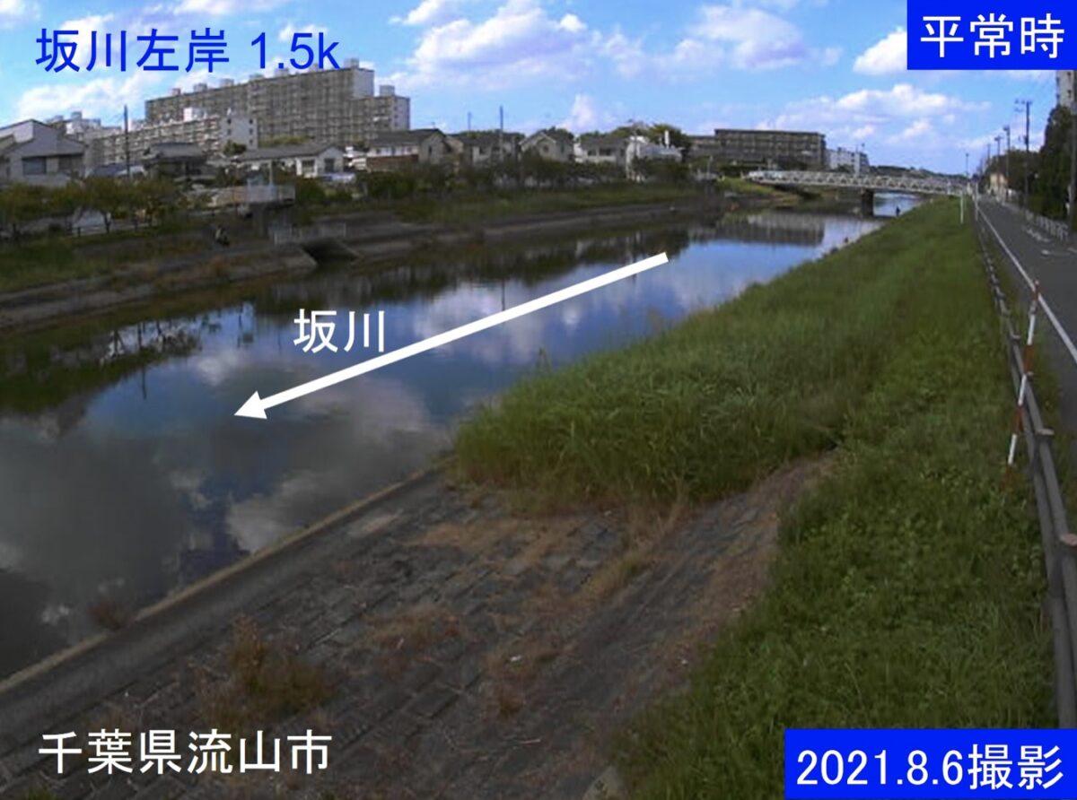 坂川・左岸1.5kライブカメラと雨雲レーダー/千葉県松戸市新松戸