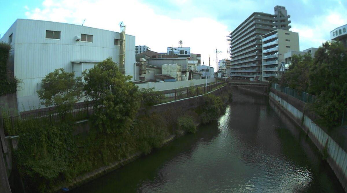 新坂川・根本ライブカメラと雨雲レーダー/千葉県松戸市根本