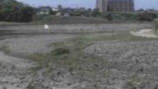 白川・熊本市下南部ライブカメラと雨雲レーダー/熊本県熊本市東区