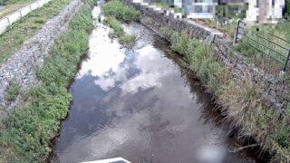 承知川・西豊ライブカメラと雨雲レーダー/長野県下諏訪町西豊