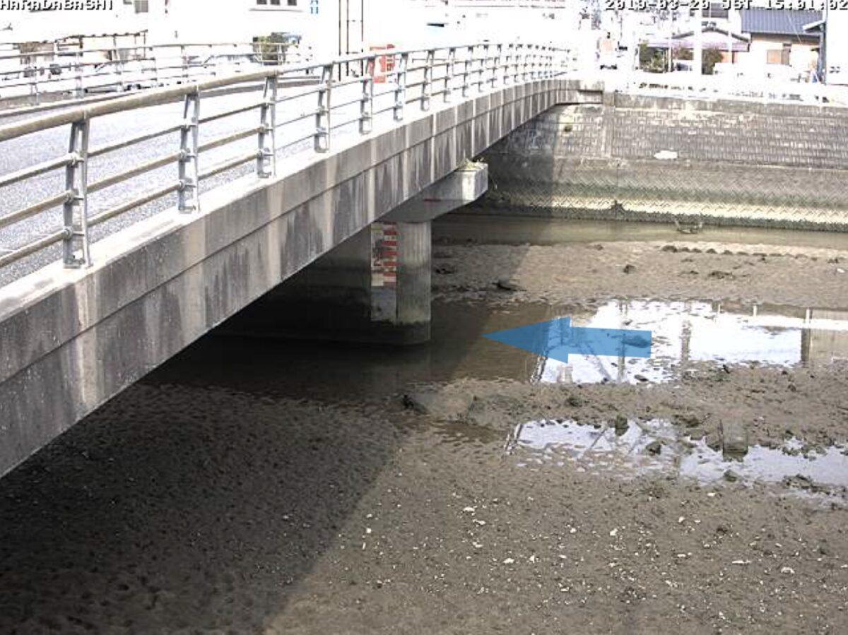 須恵川・原田橋 ライブカメラと雨雲レーダー/福岡県福岡市東区