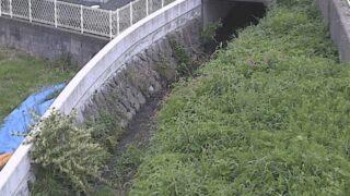 高瀬川・白野江4ライブカメラと雨雲レーダー/福岡県北九州市門司区