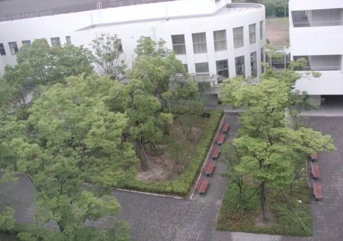大阪薬科大学ライブカメラと雨雲レーダー/大阪府高槻市
