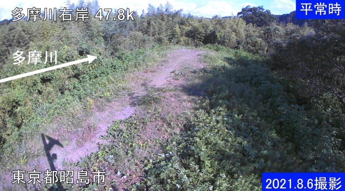 多摩川・右岸47.8kライブカメラと雨雲レーダー/東京都昭島市拝島町