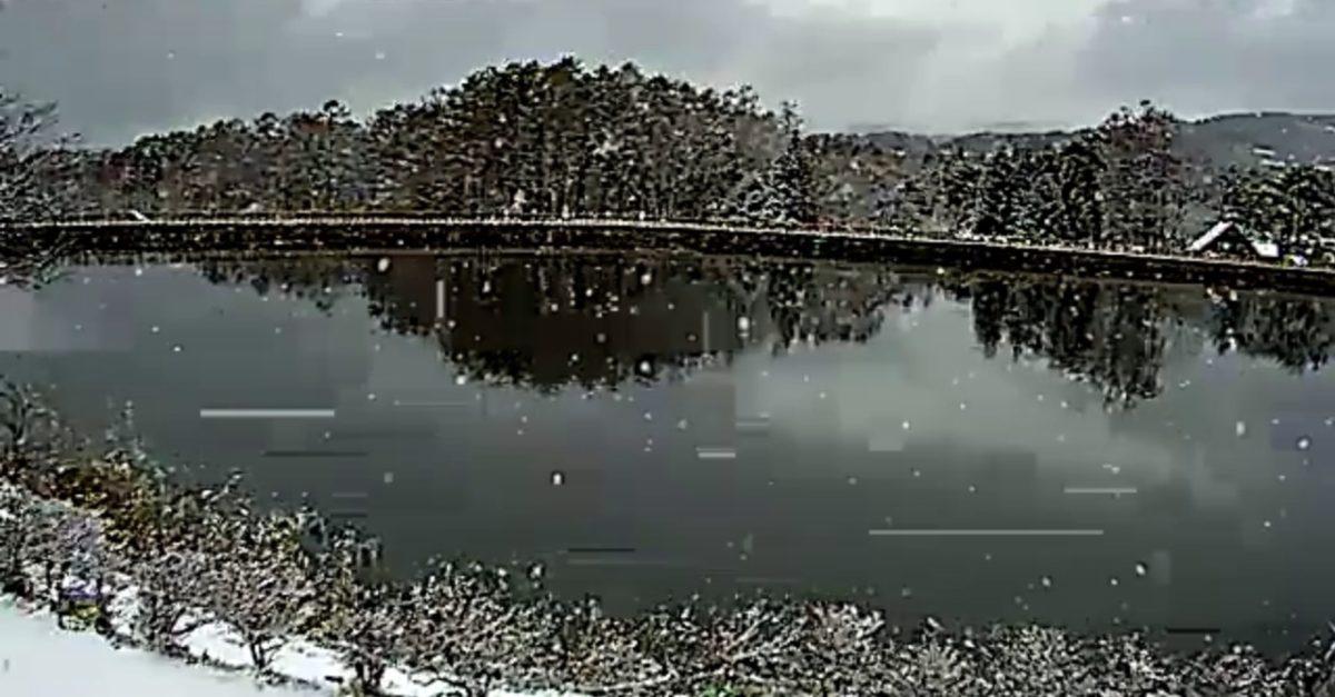 蓼科湖(たてしなこ)と周辺ライブカメラと雨雲レーダー/長野県茅野市