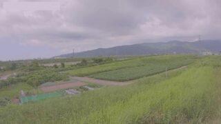 手取川・霞堤ライブカメラと雨雲レーダー/石川県能美市宮竹町