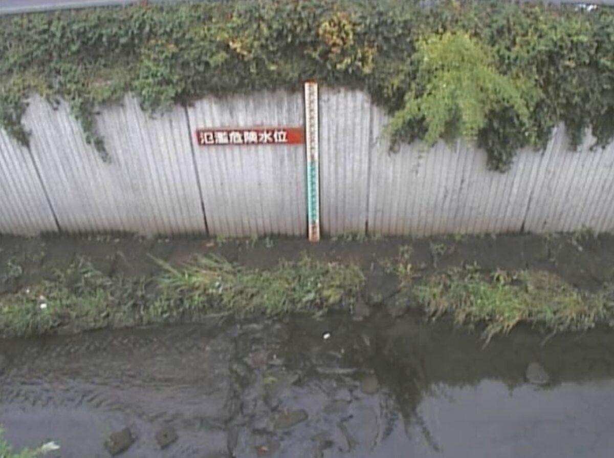 谷沢川・丸山橋ライブカメラと雨雲レーダー/東京都世田谷区中町
