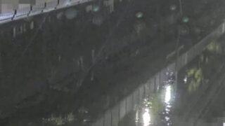 善福寺川・関根文化公園付近ライブカメラと雨雲レーダー/東京都杉並区上荻