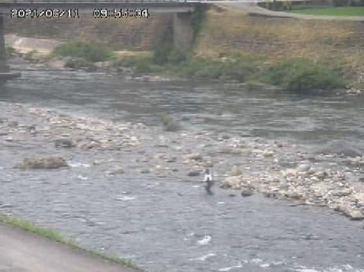 長良川・和合橋ライブカメラと雨雲レーダー/岐阜県郡上市大和町