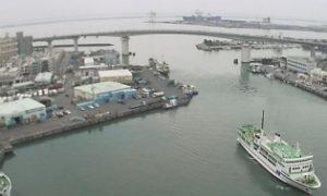 泊港の見える「とまりん」ライブカメラと雨雲レーダー/沖縄県那覇市