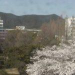岐阜大学ライブカメラ(3ヶ所)