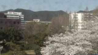 岐阜大学ライブカメラ(3ヶ所)と雨雲レーダー/岐阜県岐阜市