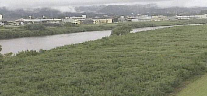 新潟県 関川(保倉川)・姫川(小滝川)ライブカメラと雨雲レーダー