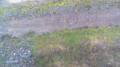 停止中:信夫山ライブカメラと雨雲レーダー/福島県福島市