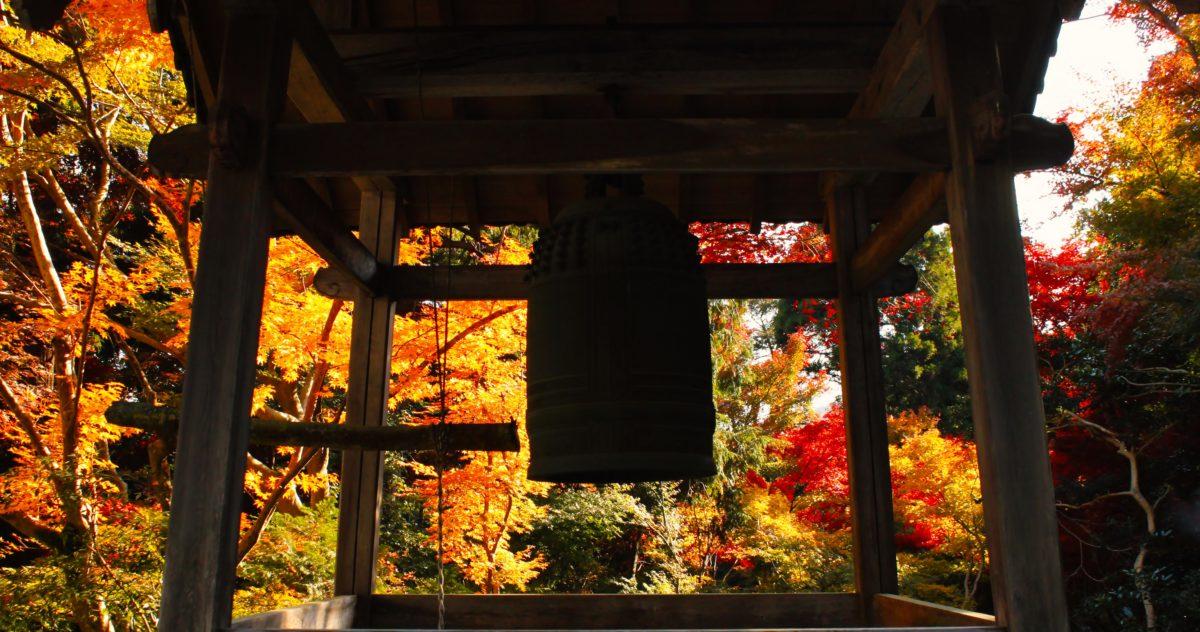 全国のお寺のライブカメラ一覧