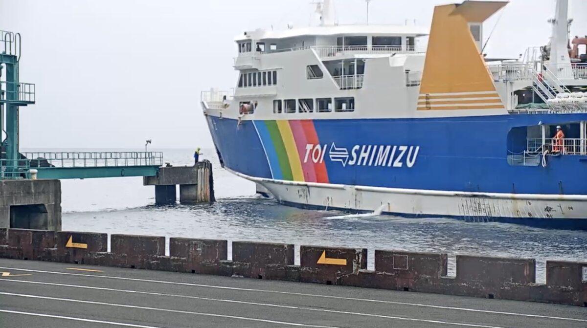 駿河湾フェリー土肥港 ライブカメラと雨雲レーダー/静岡県伊豆市