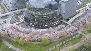 六本木 東京ミッドタウン 桜並木・檜町公園 ライブカメラと雨雲レーダー/東京都港区